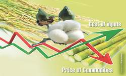 Higher production cost, lower crop prices