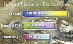 Falling inland fish  production