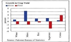 Further decline in crop yields