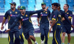 Comment: Selectors fail to show muscle over T20 squad