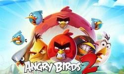 ناراض پرندوں کی واپسی