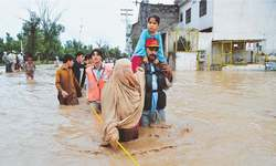 Lost livestock: Bleak days ahead for flood-affected Chitralis