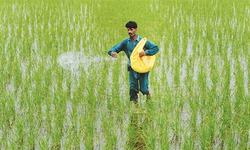 Rs20bn subsidy on fertilisers discussed