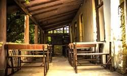 Let Pakistan's private schools fix the public ones