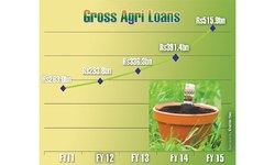 Appetite for agricultural loans