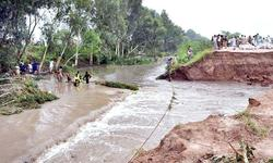 Flooding destroys five crops in eight districts