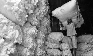 NA body for banning cotton yarn imports from India