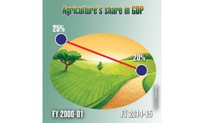 Time to change crop pattern