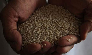 Hike in feed-gas prices for the fertiliser industry