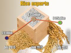 Falling global rice prices reducing export earnings