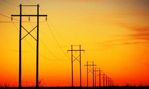 Another top energy sector official quits