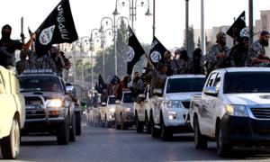 Toyota willing to help probe over IS truck fleet