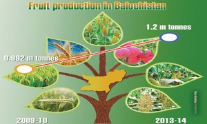 Balochistan's focus on farm productivity