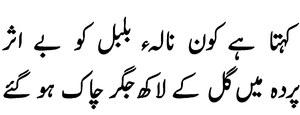 COLUMN: The bulbul in Urdu's garden