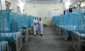 A day at the dengue ward
