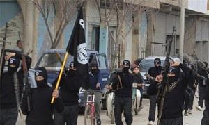 پیرس حملے: متضاد مفادات سے داعش کو کتنا فائدہ ہوگا؟