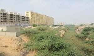 Supreme Court halts demolition of 'illegally-constructed' Moon Garden
