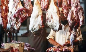 Ban on cattle, meat imports from France lifted