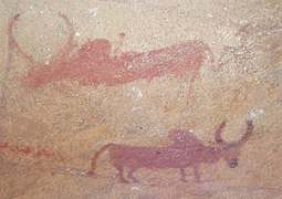 Cave art: Stories in stone
