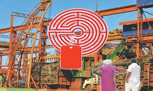Sindh's indecision on sugarcane pricing benefits mills
