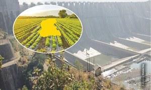 Non-functional Darawat Dam