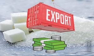 High cost of subsidy in sugar exports