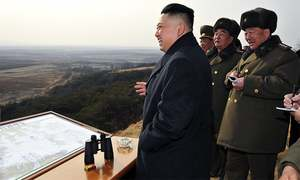 North Korean rocket puts object into space, angers neighbours, US
