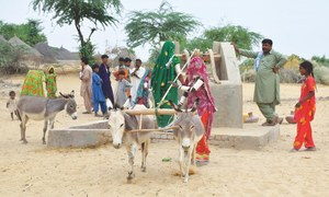 Delay in Sindh's drought mitigation policy