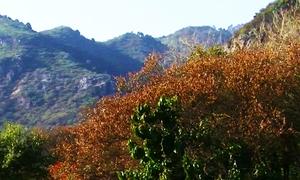 اسلام آباد کا دلفریب موسم اور دامنِ کوہ کی خوبصورتی