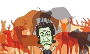Environment: Peshawar Zoo: a blessing or a bane?
