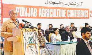 Punjab's support for development activity
