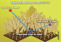 Punjab begins procurement of wheat amid price fall fears