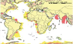 Offshore hydrocarbon prospectivity