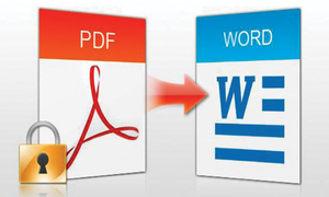 Converting PDF files into Word documents
