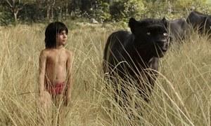 جنگل بک کمائی میں بولی وڈ فلموں سے آگے
