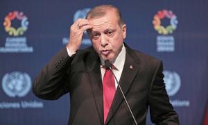 Visa-free travel could solve Turkey's 'Kurdish problem'