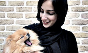 Iran cracks down on 'vulgar Western' dog owners