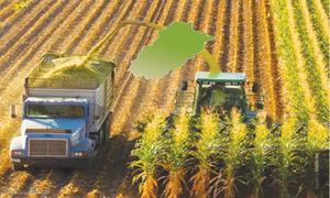 Preserving green fodder