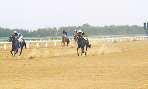 So What runs away with Eid Millan Cup at KRC