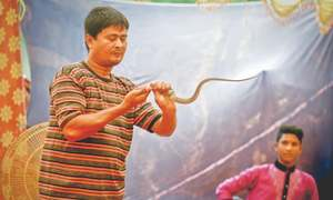 Snakes being ruthlessly killed in zoo 'magic show'