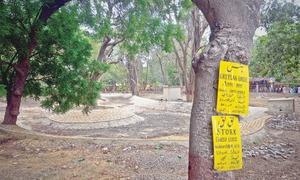 Zoo pond renovation delay hurting birds