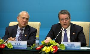 'China WTO accession deal must be fully applied in market status debate'