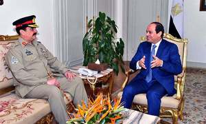 Gen Raheel discusses emerging security challenges with Egypt's President Sisi