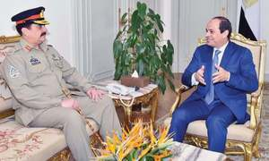 Army chief meets Sisi