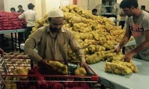 سعودی عرب میں ہندوستانی شہریوں کیلئے مفت راشن