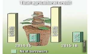 Negative agriculture growth despite surge in credit