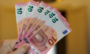 Rupee loses against Euro
