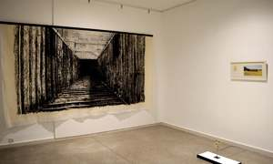 Manipulating the gallery space