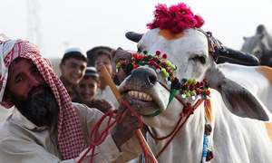 Eid-ul-Azha: affluence on display
