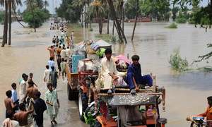 Sindh Irrigation Department leaves small contractors out to dry